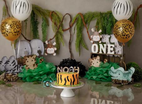 Noah's Jungle theme 1st birthday cake smash : Ormeau, Gold Coast, Brisbane cake smash photograph