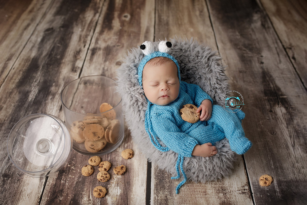 Cookie Monster newborn photo