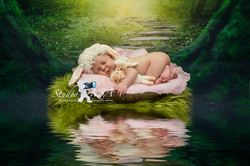 Sunshine Coast Newborn Photography