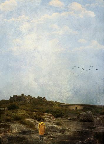 vista geral - integração na paisagem