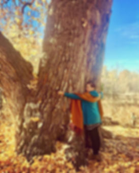 Artis Moon Amarche | treehugger