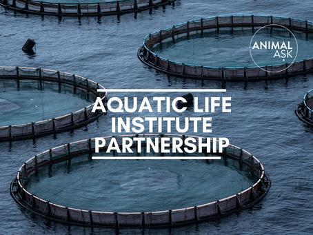 Aquatic Life Institute Consultation Partnership