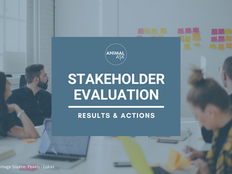 Mid-term Stakeholder Evaluation