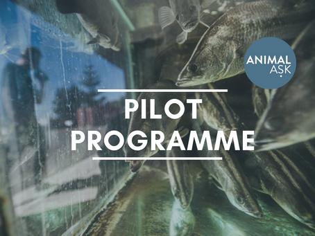 Pilot Programme Launch