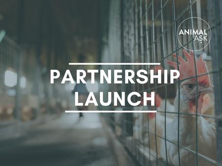 Partnership Launch: Animal Equality UK