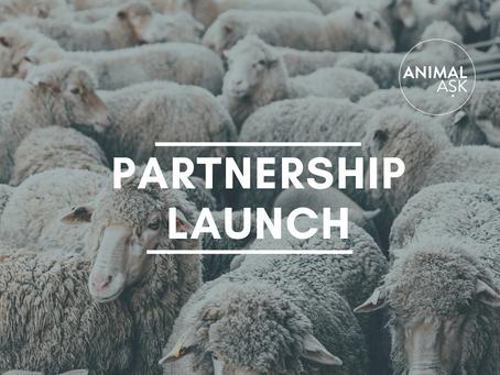 Partnership Launch: Sentience Politics