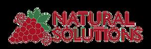 NatSol-Logo%202015_edited.png
