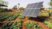 Energia solar em propriedades rurais