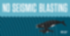 Stop seismic blasting nc chapter.png