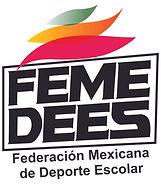 LOGO FEMEDES.jpg