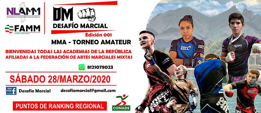 DESAFIO MARCIAL 001.jpg