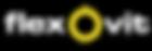 Flexovit-Logo-website_1.png