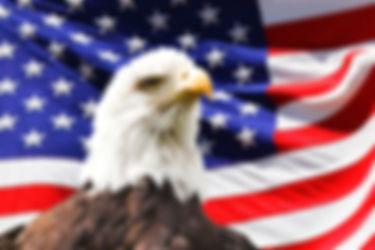 American Eagle Patriot