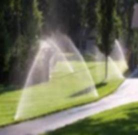 sprinklers.jpg