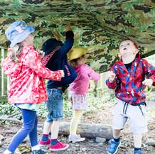 Woodland tales @ Claverdon School