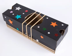 Can you make your own musical instruments at home?