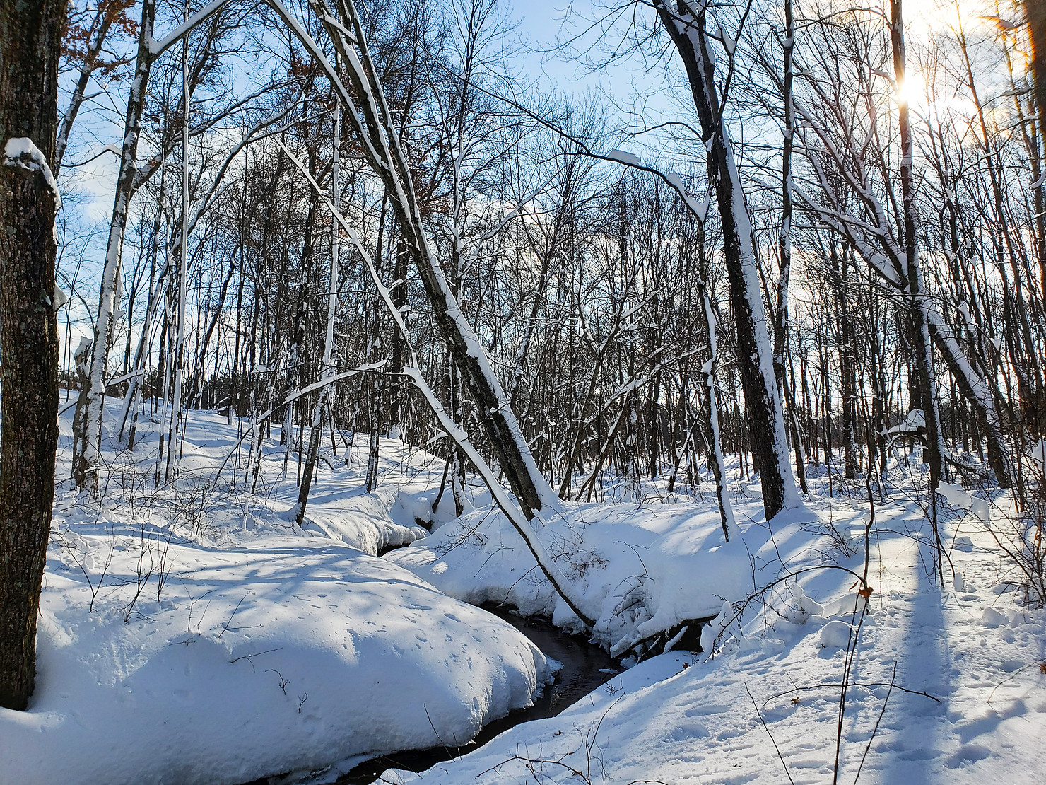 Snowshoeing Photos: Beautiful Winter in Eau Claire County Wisconsin
