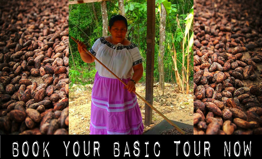Chocolate Tour - Basic