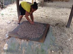 Mayan Roasting Cocao Beans