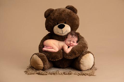 Bear composite special request