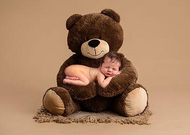 Bearforweb.jpg