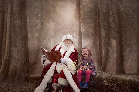 Santa sat on tree.jpg