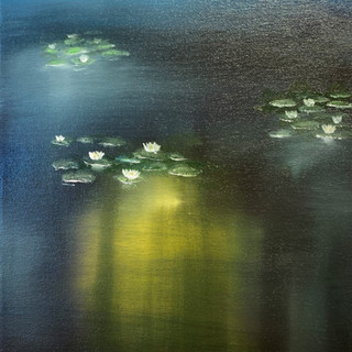 Water lilies by night