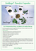 Smilings in DIABETES ADE Winter 2020