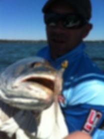 Soft Plastic Fishing Lures Australia