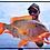 "Thumbnail: Gobblers Lures - Bait Fish""C4"""