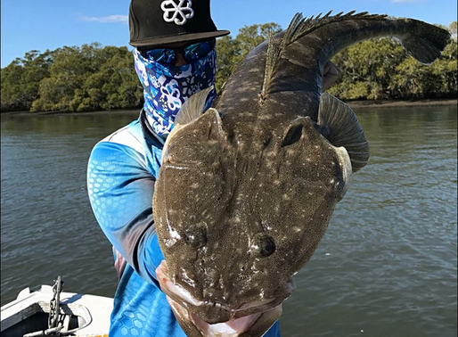How to Catch Flathead on Soft Plastics - Gobblers Lures Blog...
