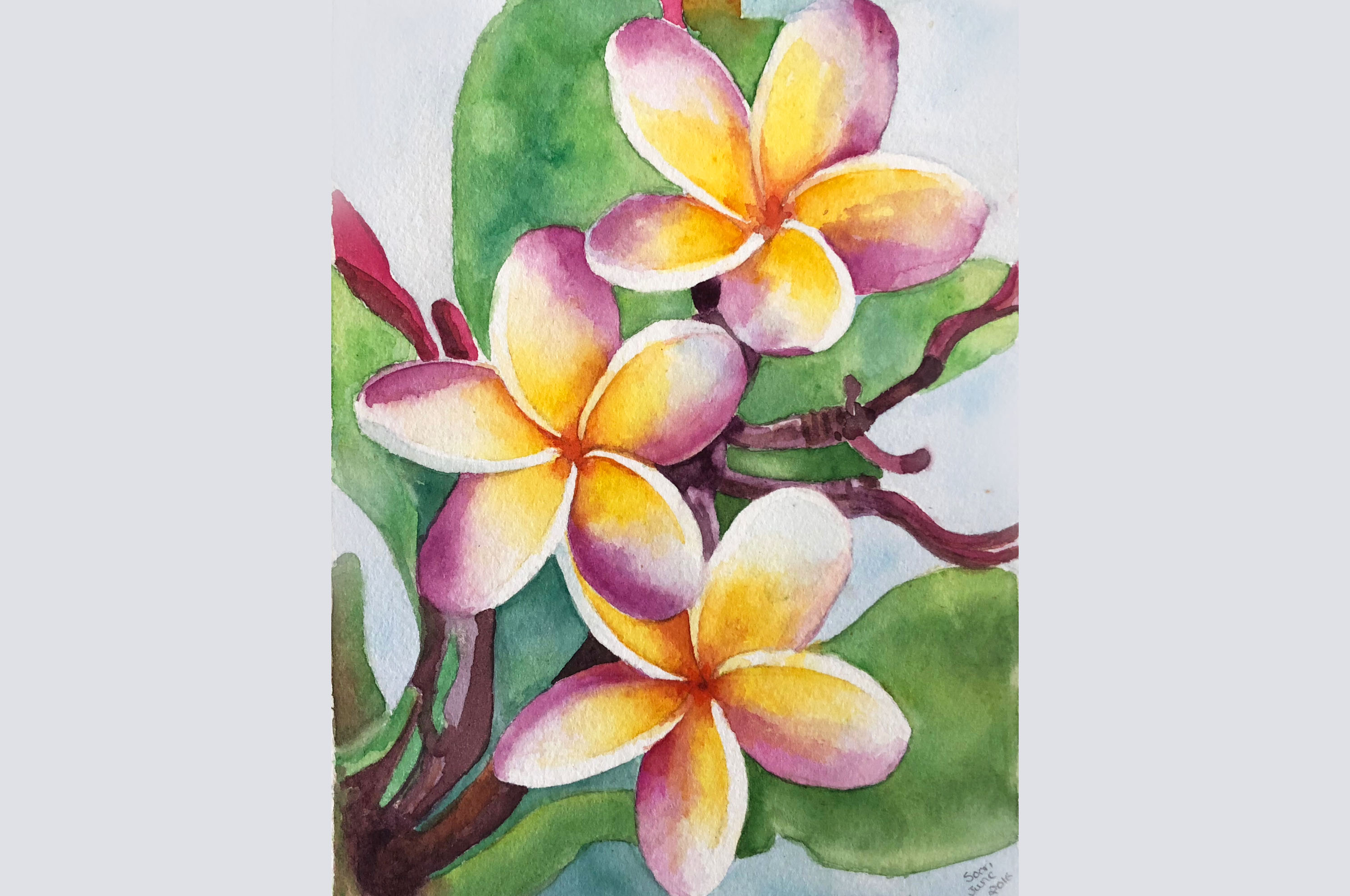 hawaiianflower