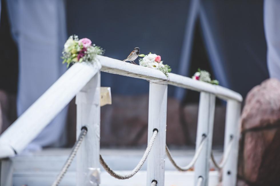 Sarit & Dror's Wedding 042.jpg