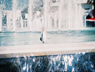 Lomography, Photography & Me