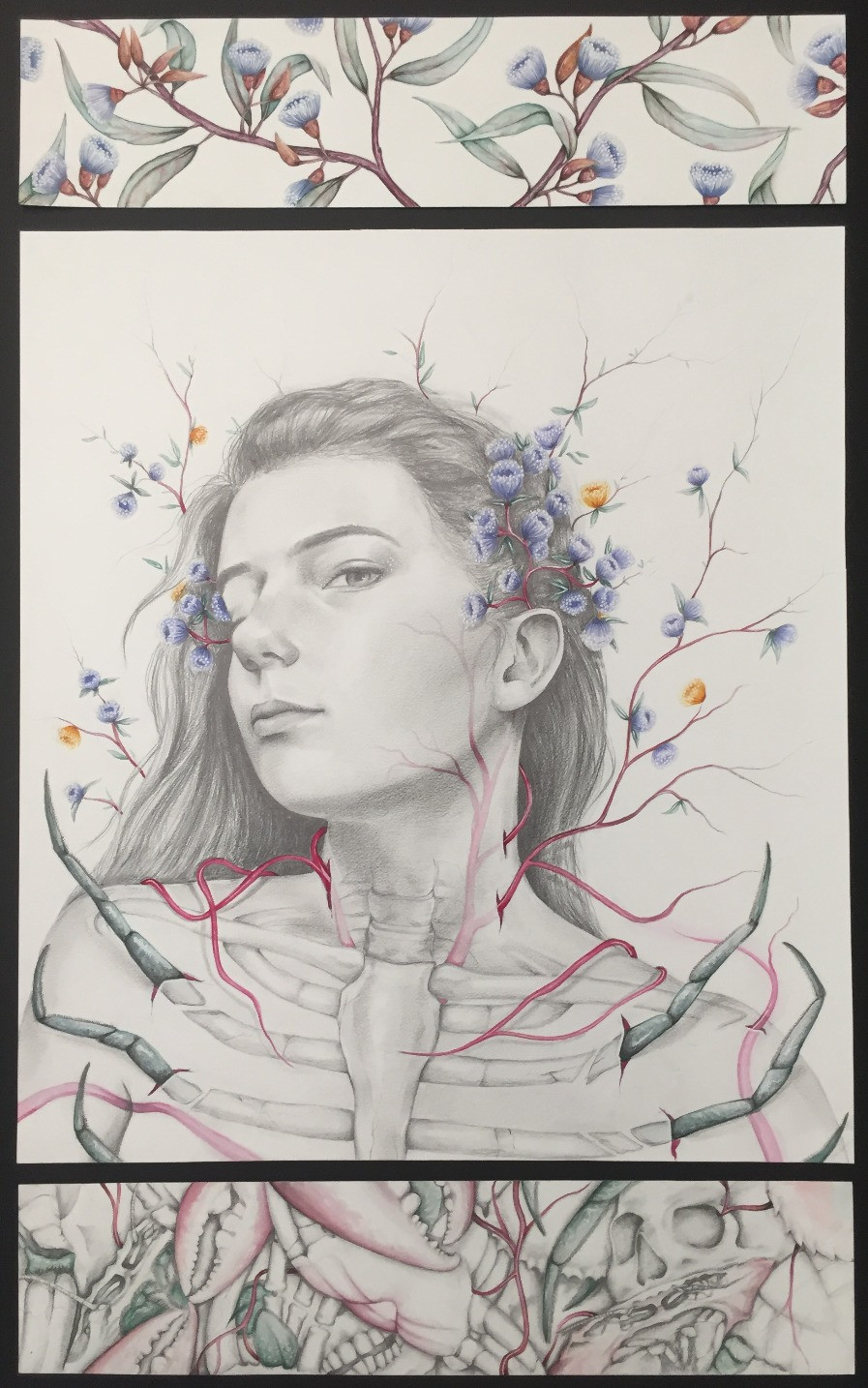 Ayla Thorbjornsen, Co-existence Graphite pencil, watercolour and white gel ink pen on paper