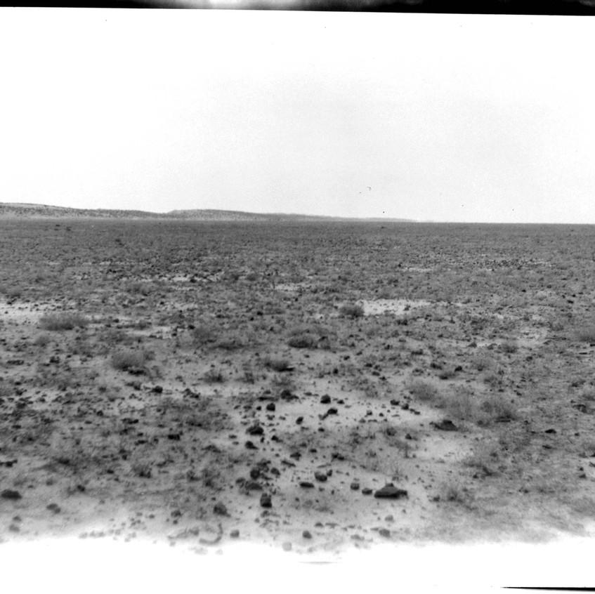 Desert Rat Kangaroo habitat circa 1931. (Photo H. H. Finlayson, from MAGNT Finlayson collection).