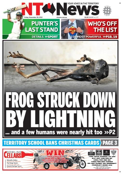 FROG STRUCK DOWN BY LIGHTNING