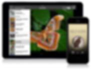 NT-promo-iOS.jpg