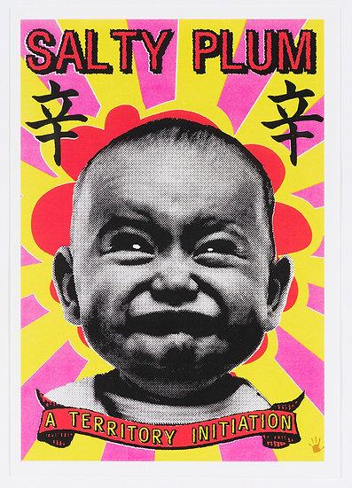 FRANCK GOHIER postcard + magnet pack
