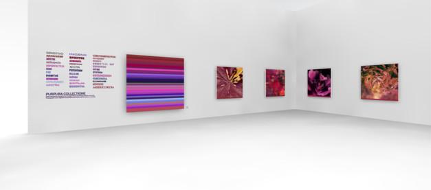 Purpura Collectione