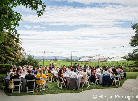 Venue Spotlight: Vine Hill House