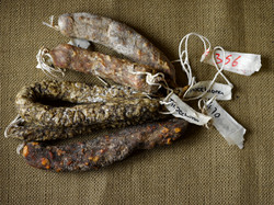 Salumi with tags on end