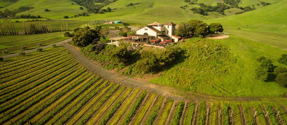 Wine Country Destination: Gloria Ferrer