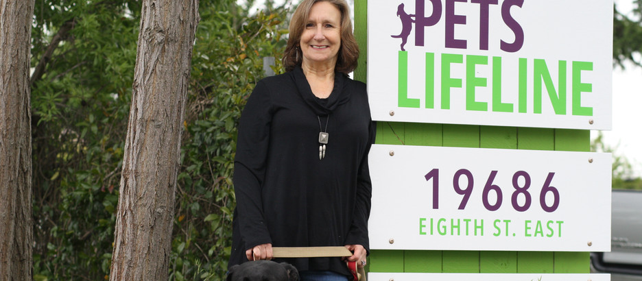 Community: Interview with Nancy King of Pets Lifeline