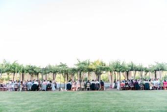 wedding reception under canopy