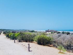 Azembay dunes/carpe diem