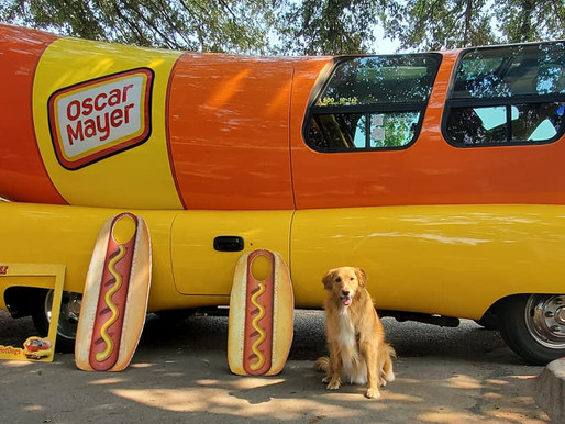 It Was A Doggone Good Time