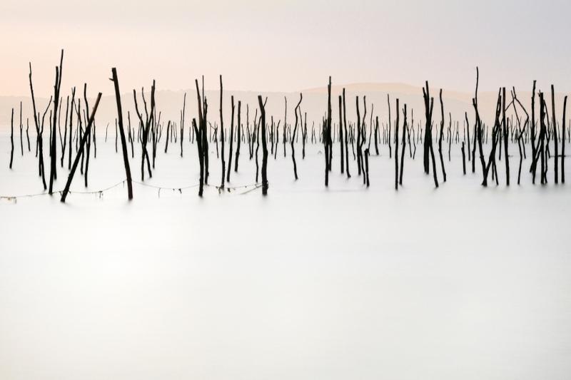 © fdelouvee-photographie.com