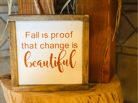 Fall is proof that change is beautiful.