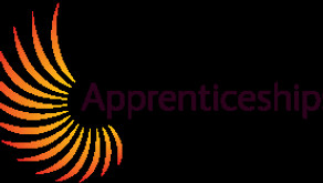 Employing your First Apprentice
